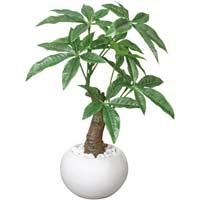 人工植物 ミニ パキラポット 高さ270