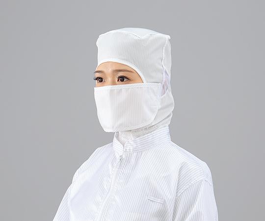 マスク クリーンルーム